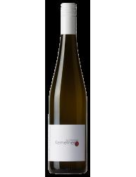 Cabernet Sauvignon 100 days 2015