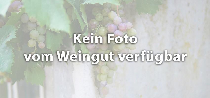 The Wine Love
