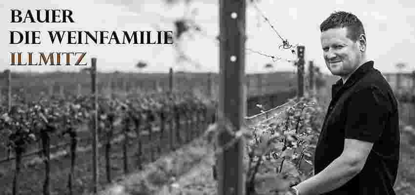 Bauer Weinbau
