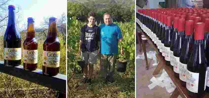 Gotsa Family Wines